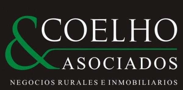 Coelho & Asociados